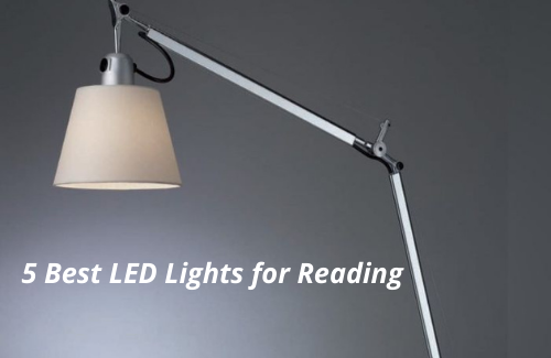 What are the Top 5 Best LED Lights for Reading?